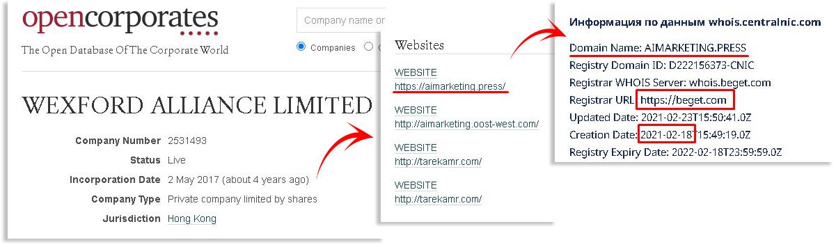 Ai_marketing_Wexford-Alliance-Limited
